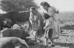 Family History Photo of the Week (4 December 2015): Grandmother feeding the chickens and pigs