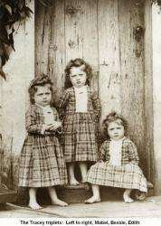 Family History Photo of the Week Winner (14 Mar 2014) ~ The Tracey Triplets