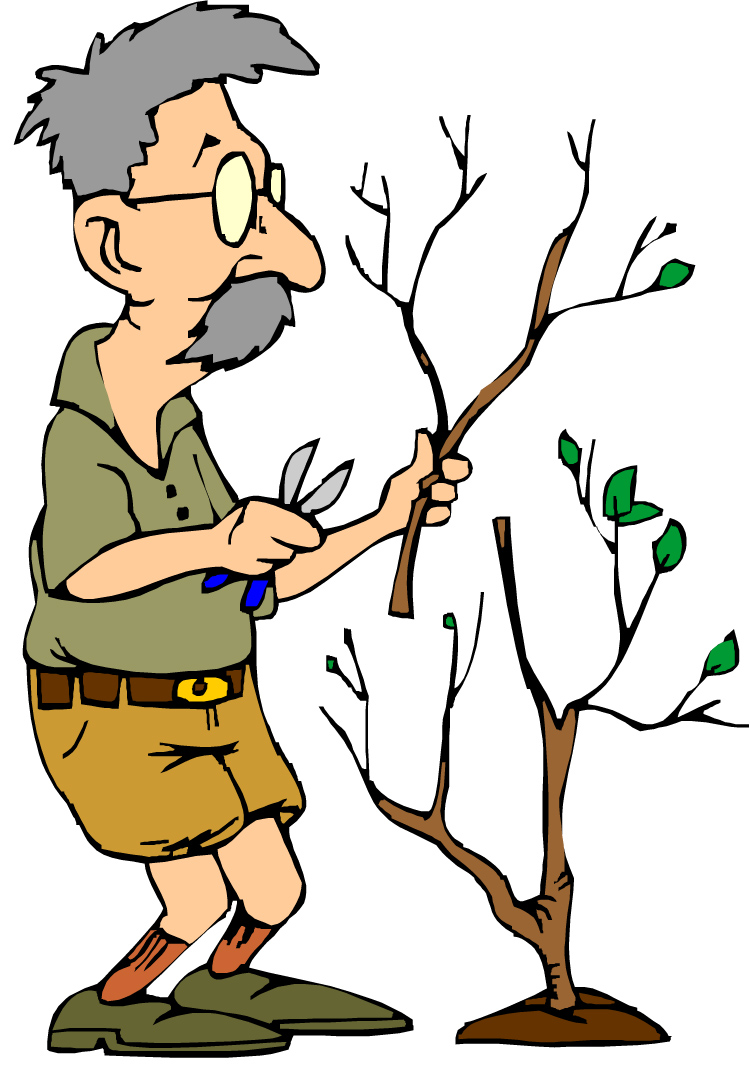 Pruning Your Family Tree