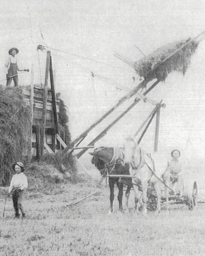 Hay-Crew.jpg