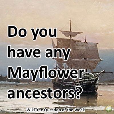 mayflower.jpg
