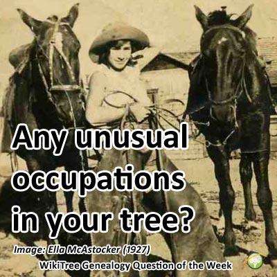occupations.jpg