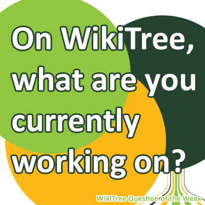 on-WikiTree.png