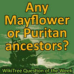 500px-Question_of_the_Week-59.png