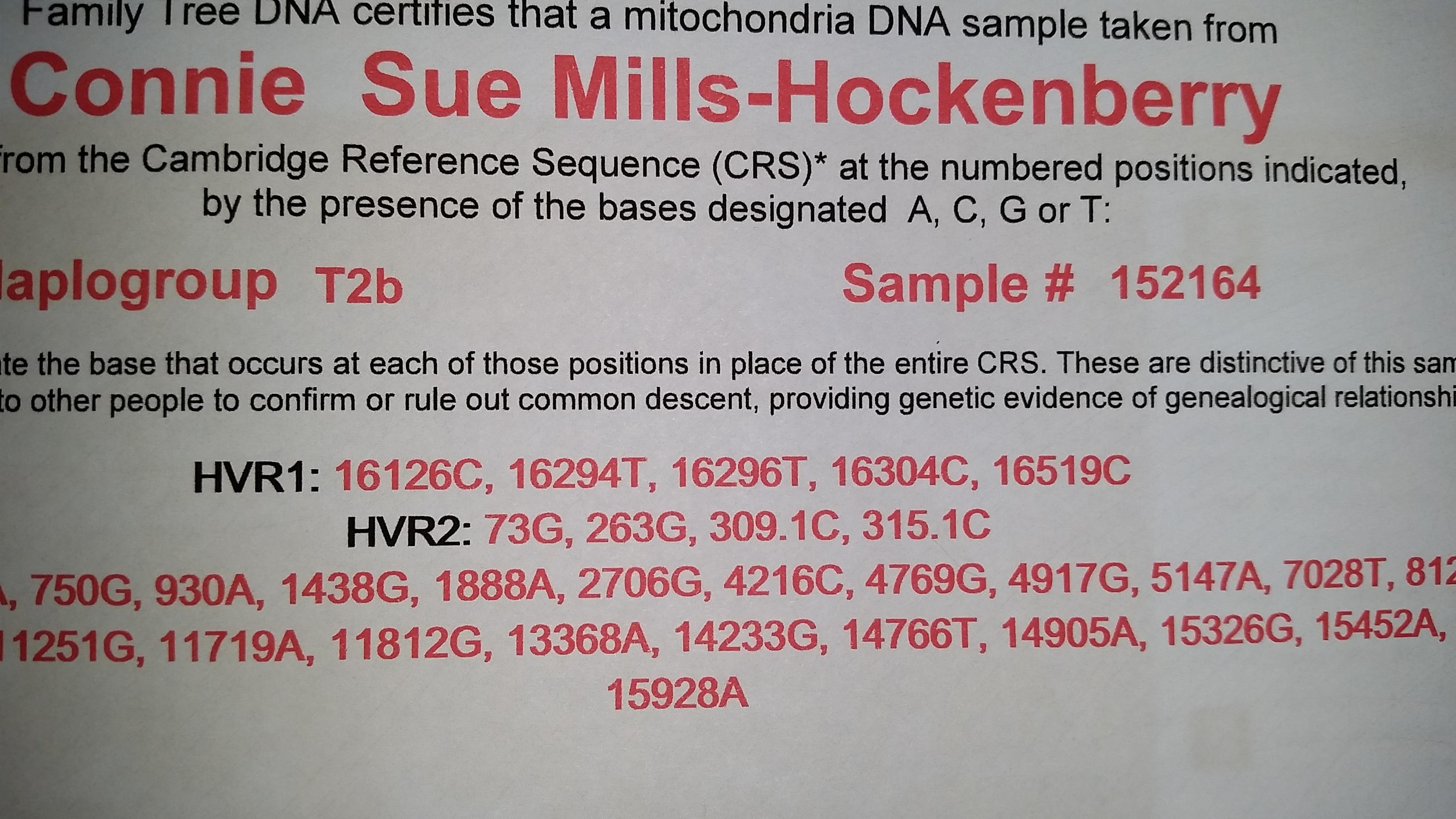 haplogroup T2b