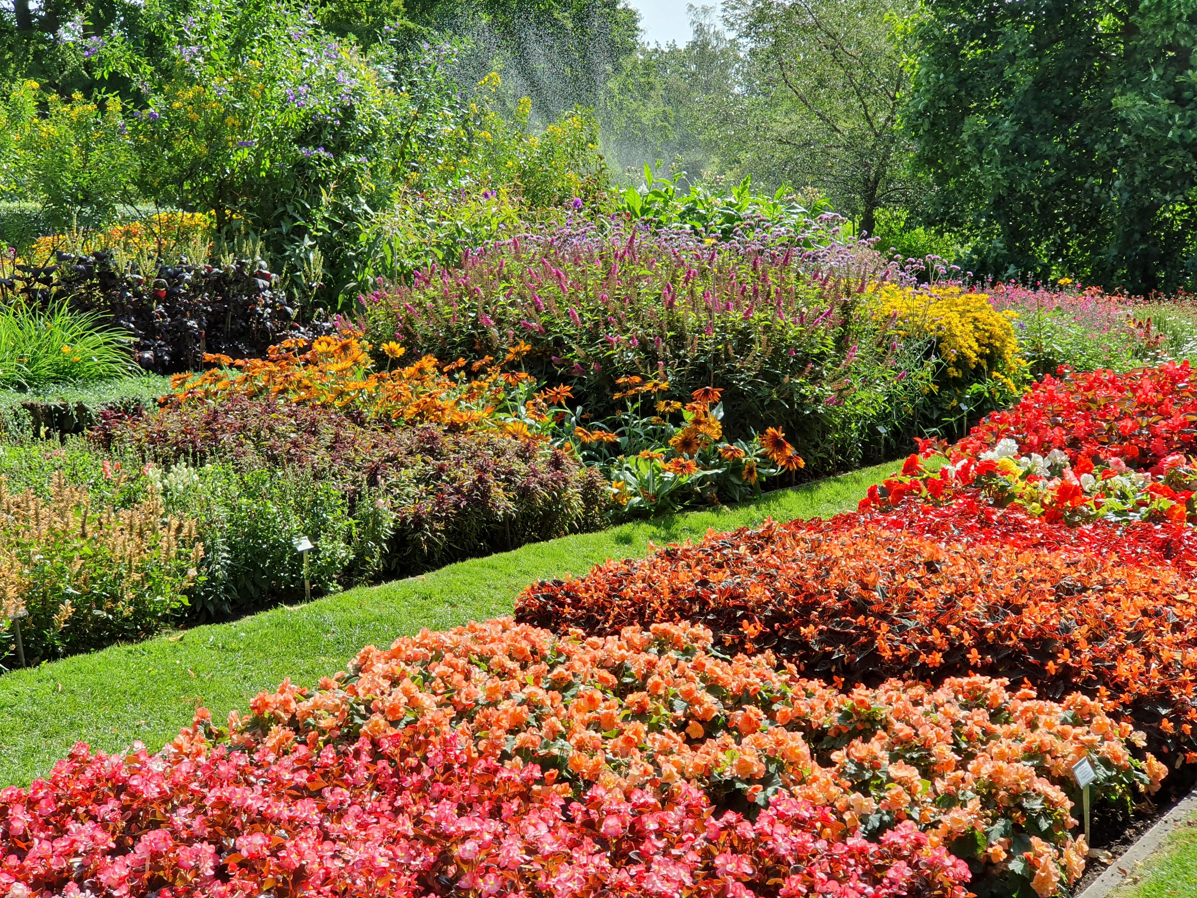 Botanical Garden, Lund