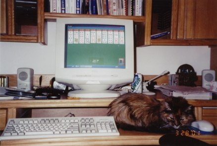 Barnett_Family_Pets-10.jpg