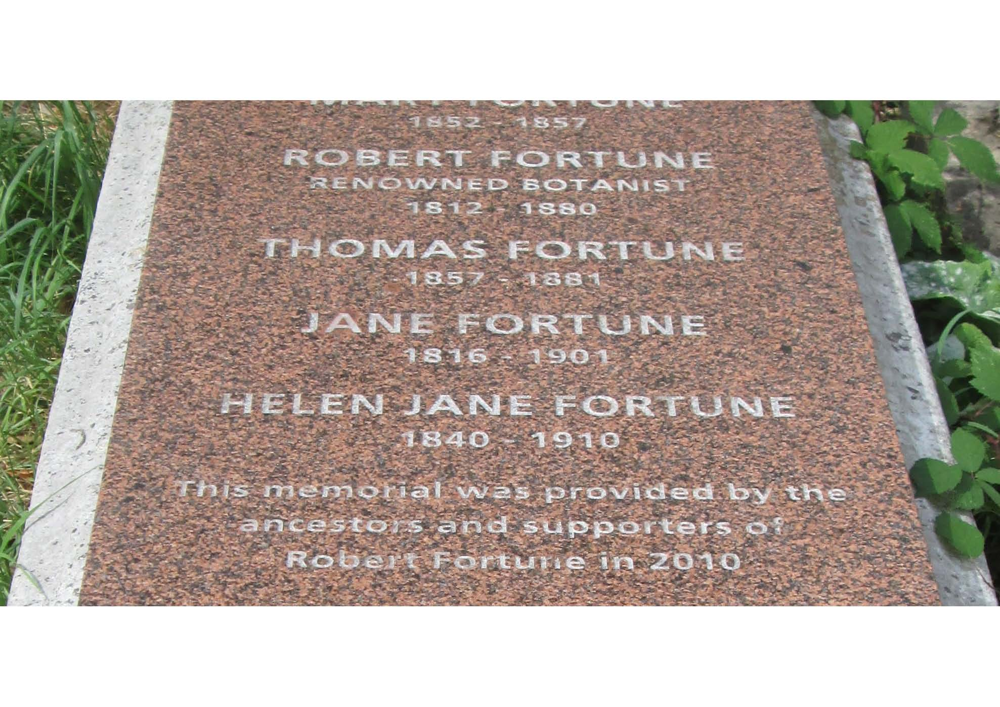 Robert Fortune Image 2