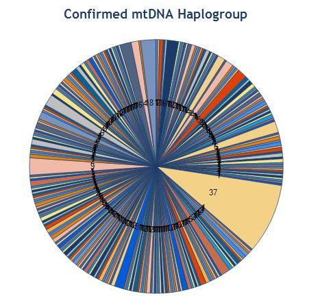 Major Y-DNA and mtDNA Haplogroups
