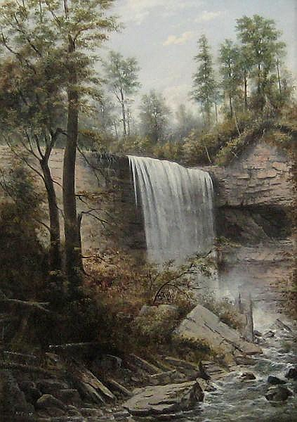 Webster Falls - Henry McEvoy