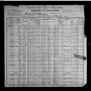 1900 Census Tuscaloosa Alabama Beat 11