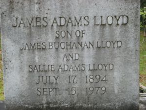 James Lloyd Image 2