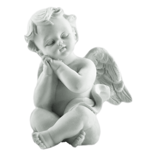 Remember the Children: Cherub