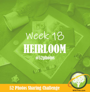 52 Photos: Week 18 - Heirloom