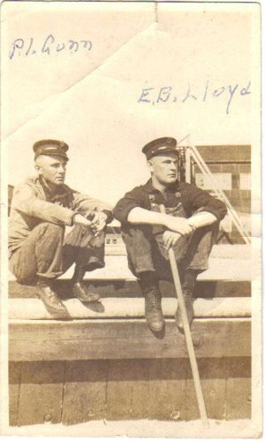 P.I. Gunn and E.B. Lloyd