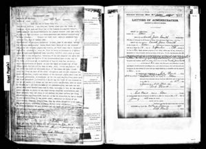 Probate document for Enoch Jones Smith