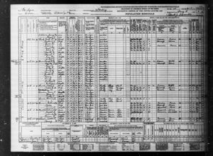 1940 US Census - Arenac County, Michigan, USA