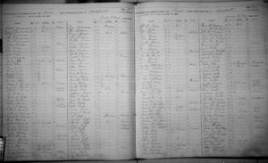 Raff Family in 1892 New York State Census