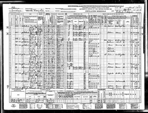 1940 Census Tuscaloosa Alabama Precinct 11