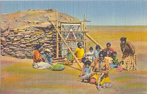 Navajo Rug Weaving in New Mexico
