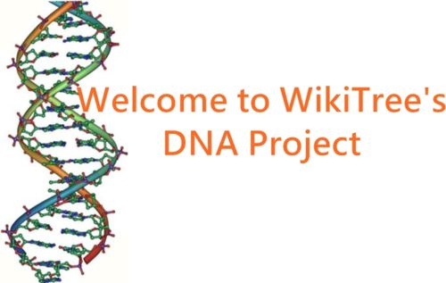 Categories dna project