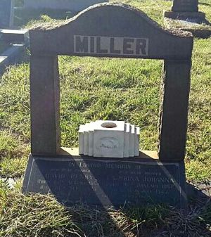 Grave of David Henry Miller and Catharina Johanna (Mostert) Miller