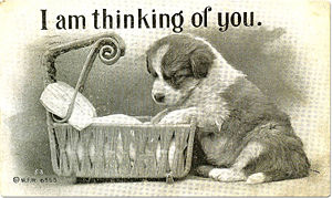 'Thinking of You' Puppy Postcard