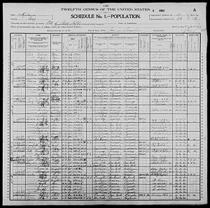 US Census 1900 Bay City, Bay, Michigan George Carrier Household
