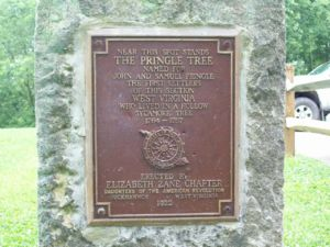 Pringle Tree DAR Marker