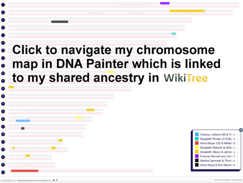 DNA Painter 10/10/2017