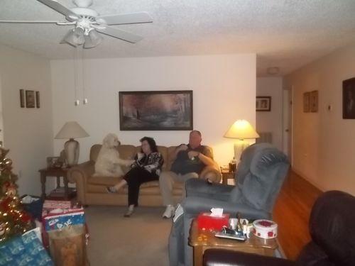 500px-Kenner_Family_Pets-20.jpg