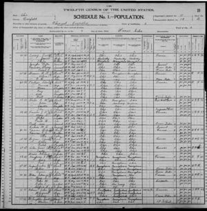 Martin Mclaughlin 1900 US Census