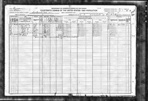 US Census - 1920 - Bledsoe County, Tennessee