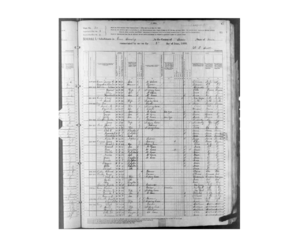 1880 Grove Township census