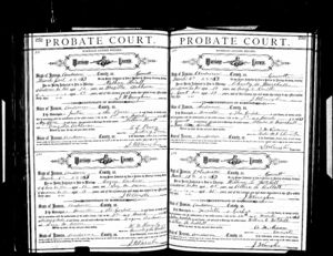 The marriage license for Nathan HIatt and Drucilla Ashburn