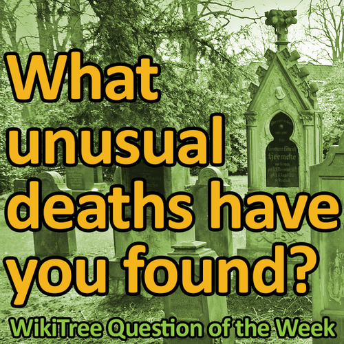 500px-Question_of_the_Week-53.png