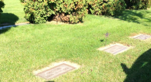 Three McGowan Graves