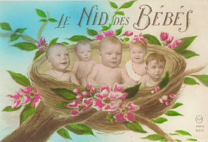 The Nest of Babies - French Postcard
