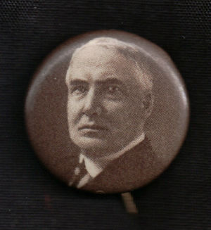 Warren Harding Presidential Campaign Pin