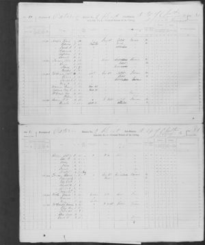 1871 Census Henry & Rebecca Arnold family (Library and Archives Canada)