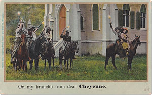 Cowboy Wedding Postcard