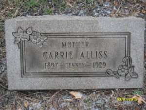 Carrie Alliss Image 2