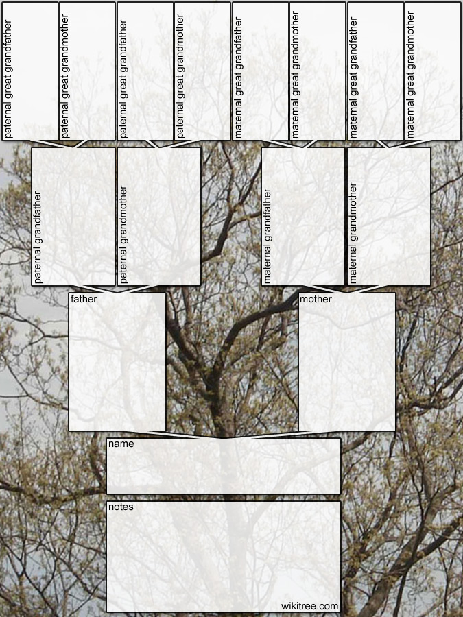 Free printable family tree diagrams ccuart Images